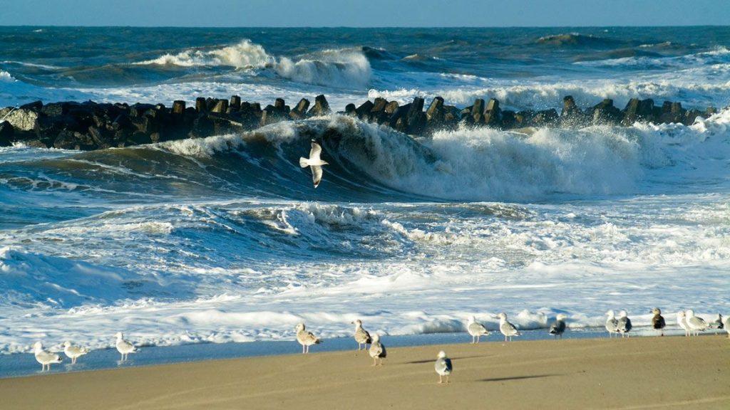 danimarka sahilleri